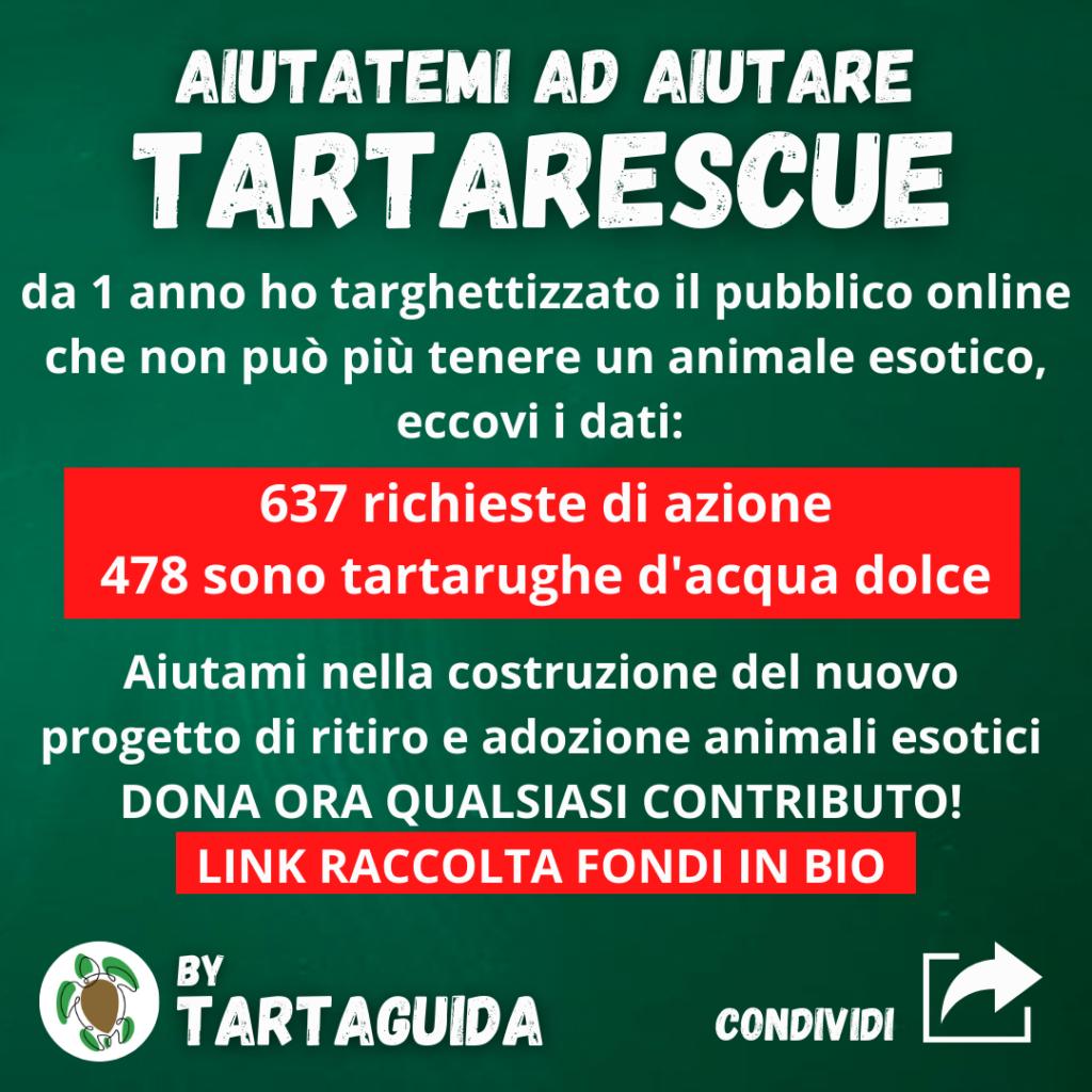 donazioni associazioni animali