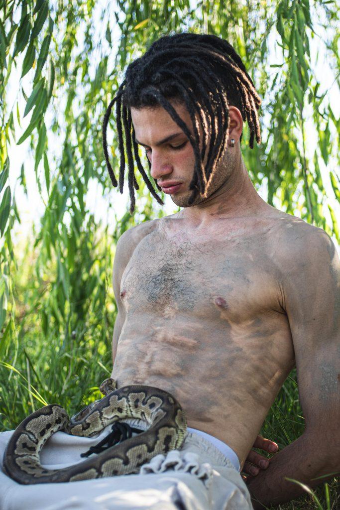 noleggio serpenti milano
