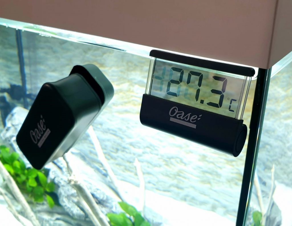 termometro digitale acquario