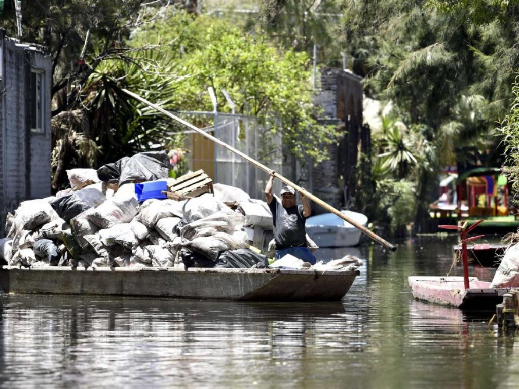 inquinamento axolotl lago xochimilco