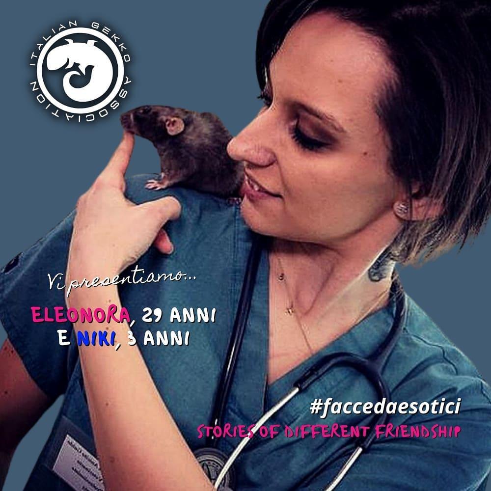 stop commercio animali esotici