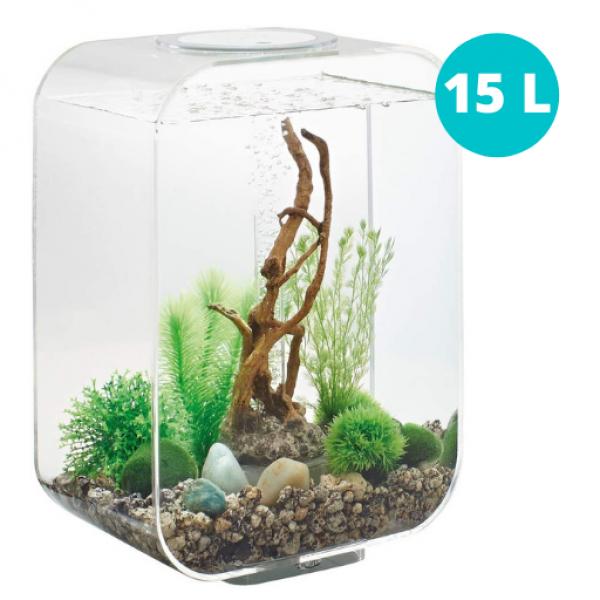 vendita acquario trasparente oase